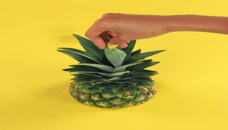 A_Cut_Above_Pineapple_Opener