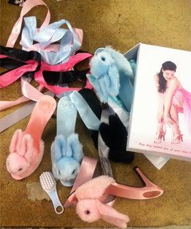 bunny main