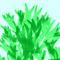 algae-spirulina-new-super-food-1