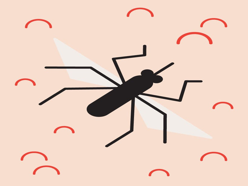 Here s Why Mosquitoes Really Won t Leave You Alone
