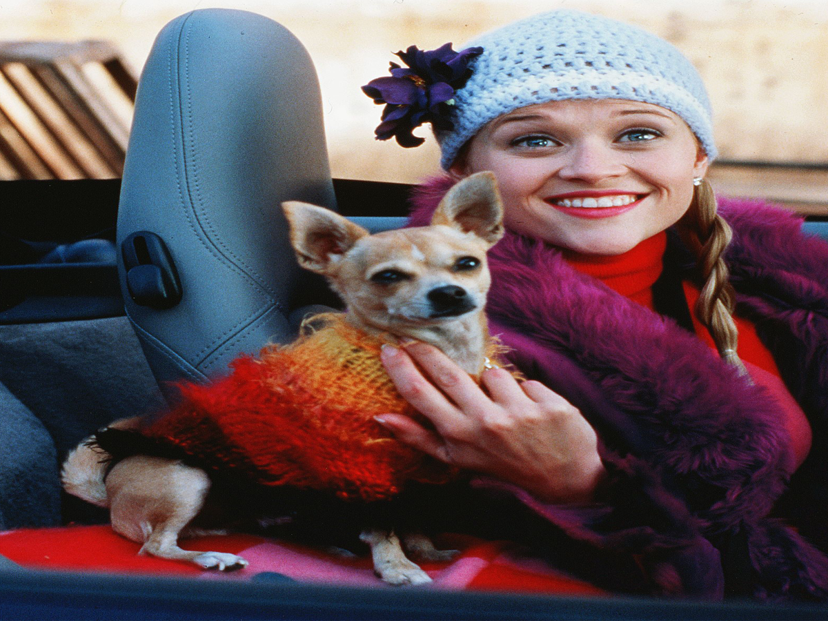 Reese Witherspoon Has Some Very Good & Very Bad Ideas For Legally Blonde Reboot