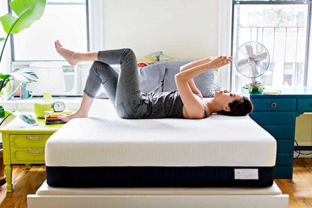 best mattress mattress covers for bed bugs