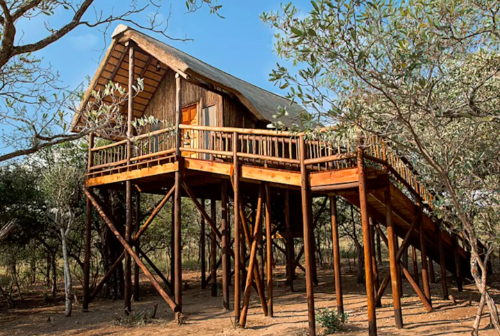 Most Expensive Tree House In The World airbnb rentals - houses apartments crazy homes to rent