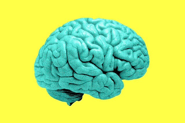 """You Could """"Fix"""" Your Brain With Magnets (No, Really)"""