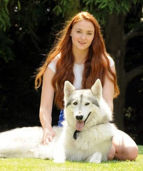Sophie Turner Game Of Thrones Sansa Lady Dog Adopted