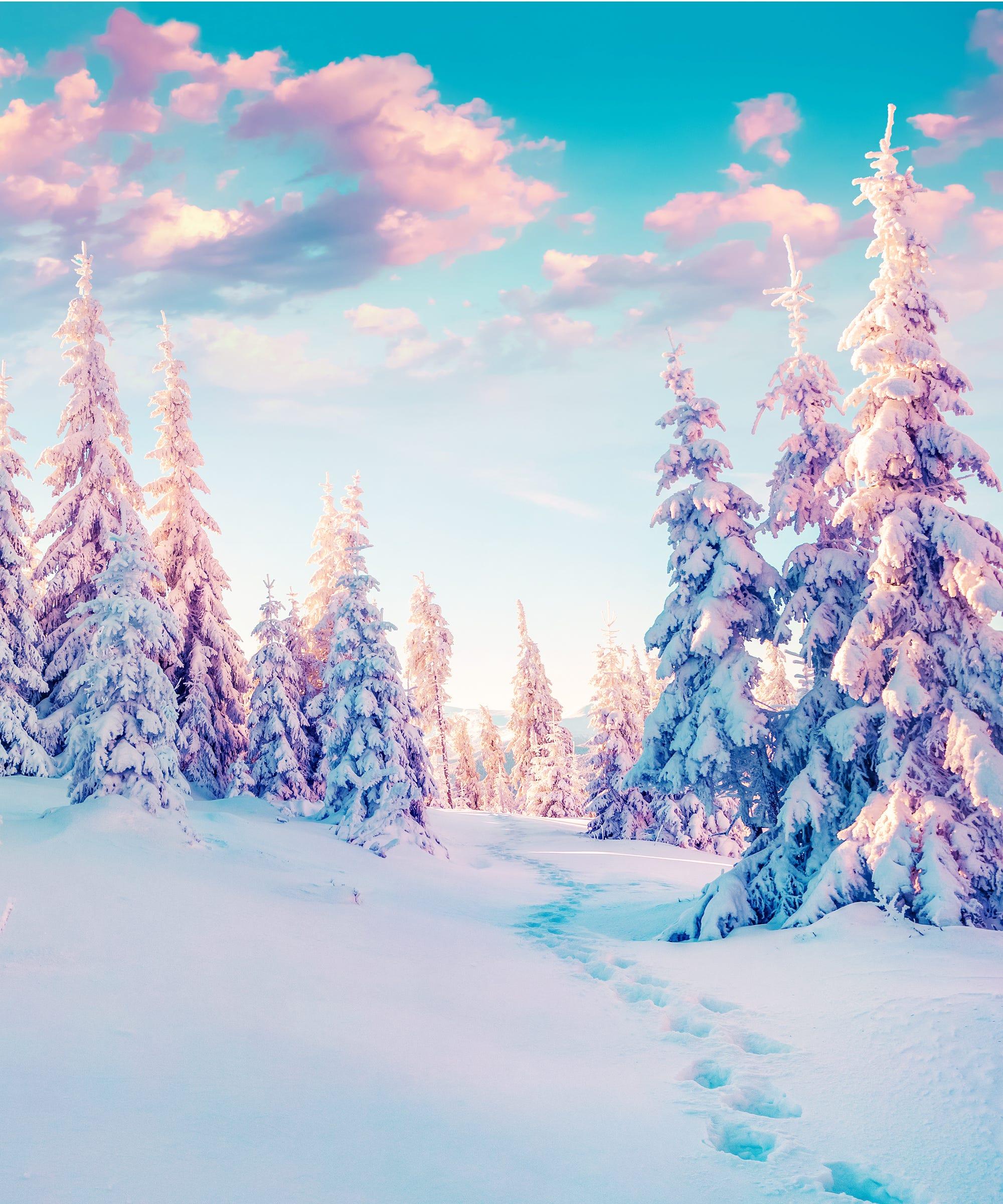 winter solstice rituals spiritual rebirth december 2016