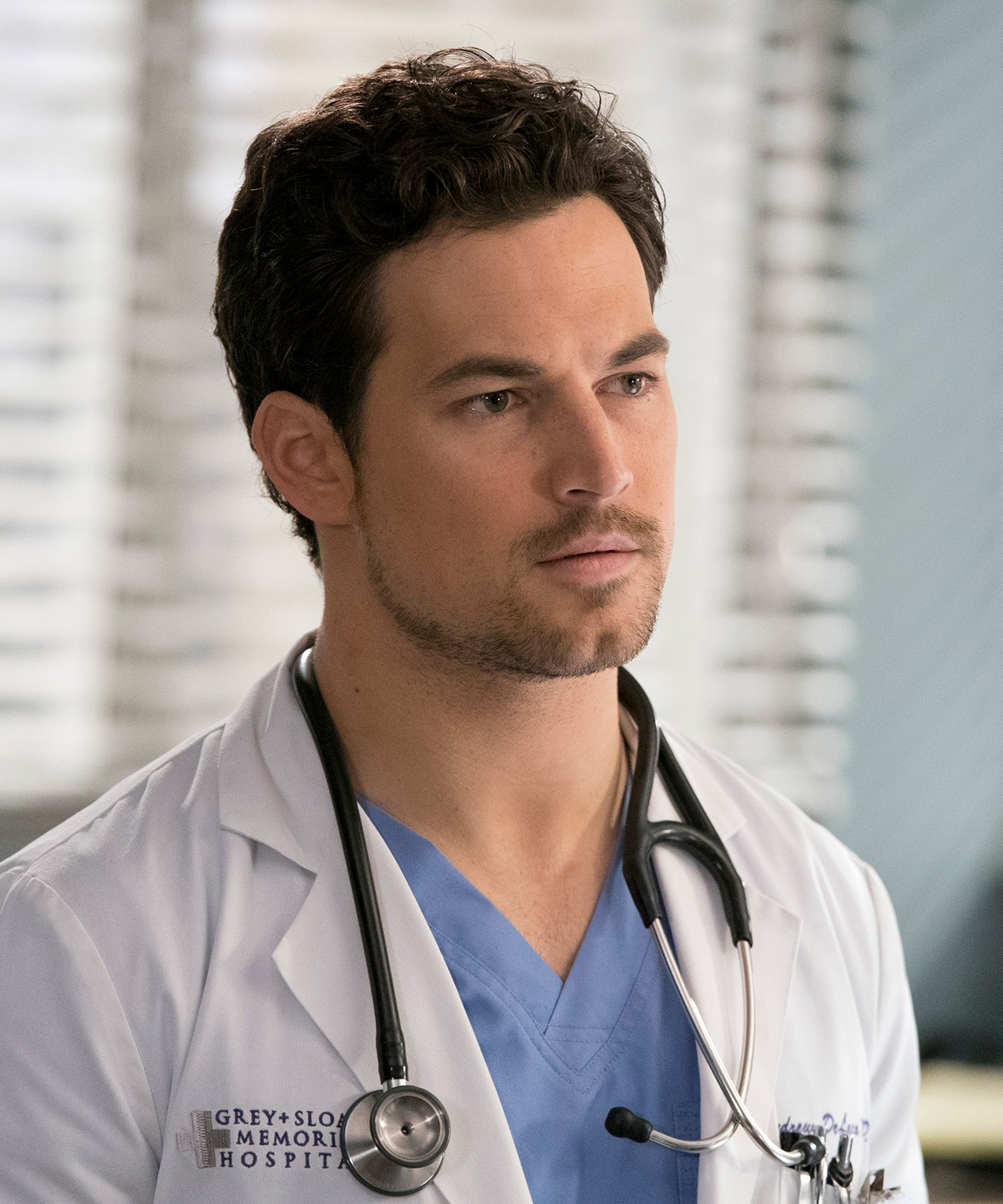 The Full Backstory Of Andrew Delucas Greys Anatomy Dad