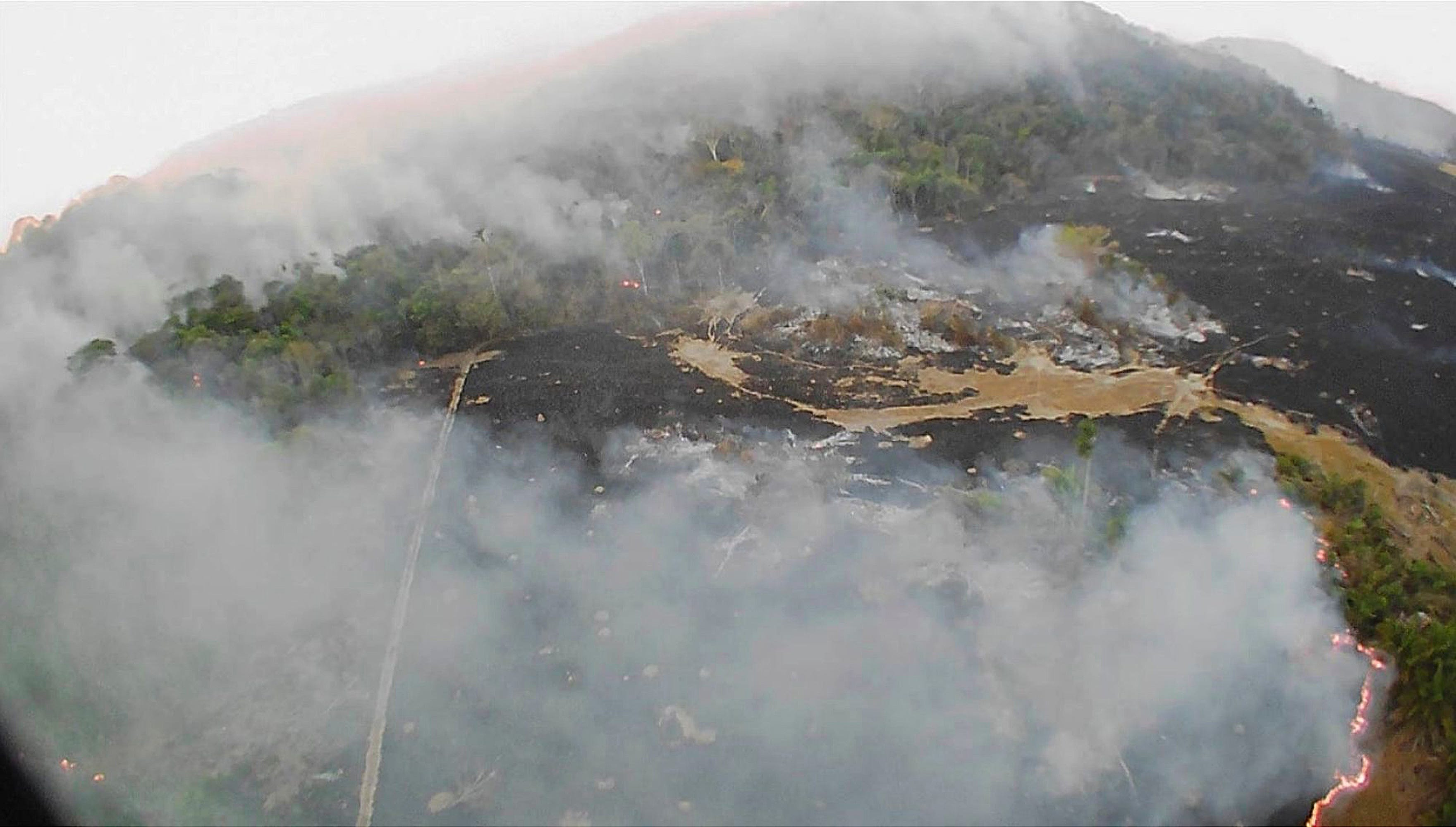 Environmental Horror & Political Scandal: What You Need To Know About The Amazon Rainforest Fires