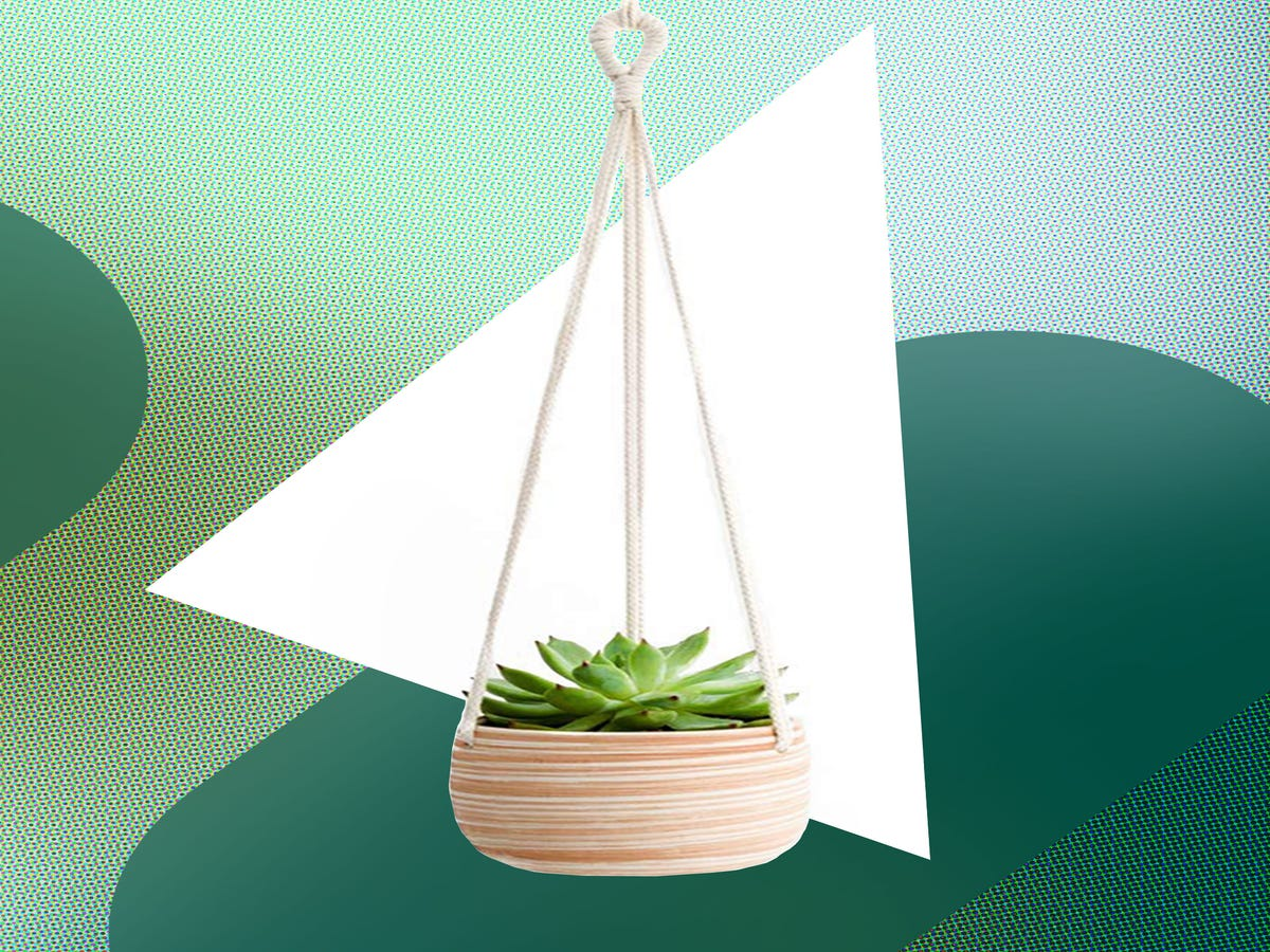 These Hanging Planters Will Actually Breath Life Into Your Home