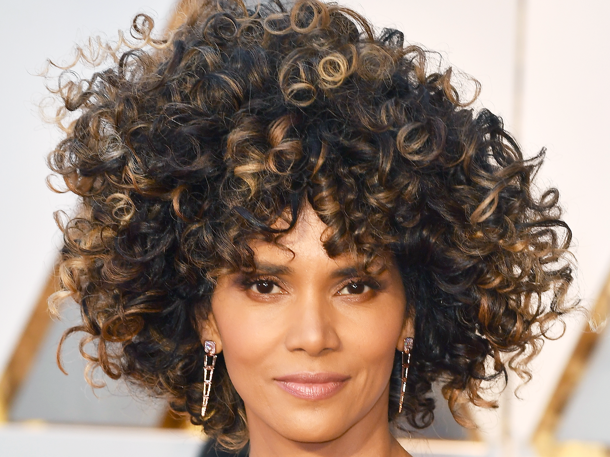 Halle Berry Oscars Red Carpet Natural Hairstyle Photos