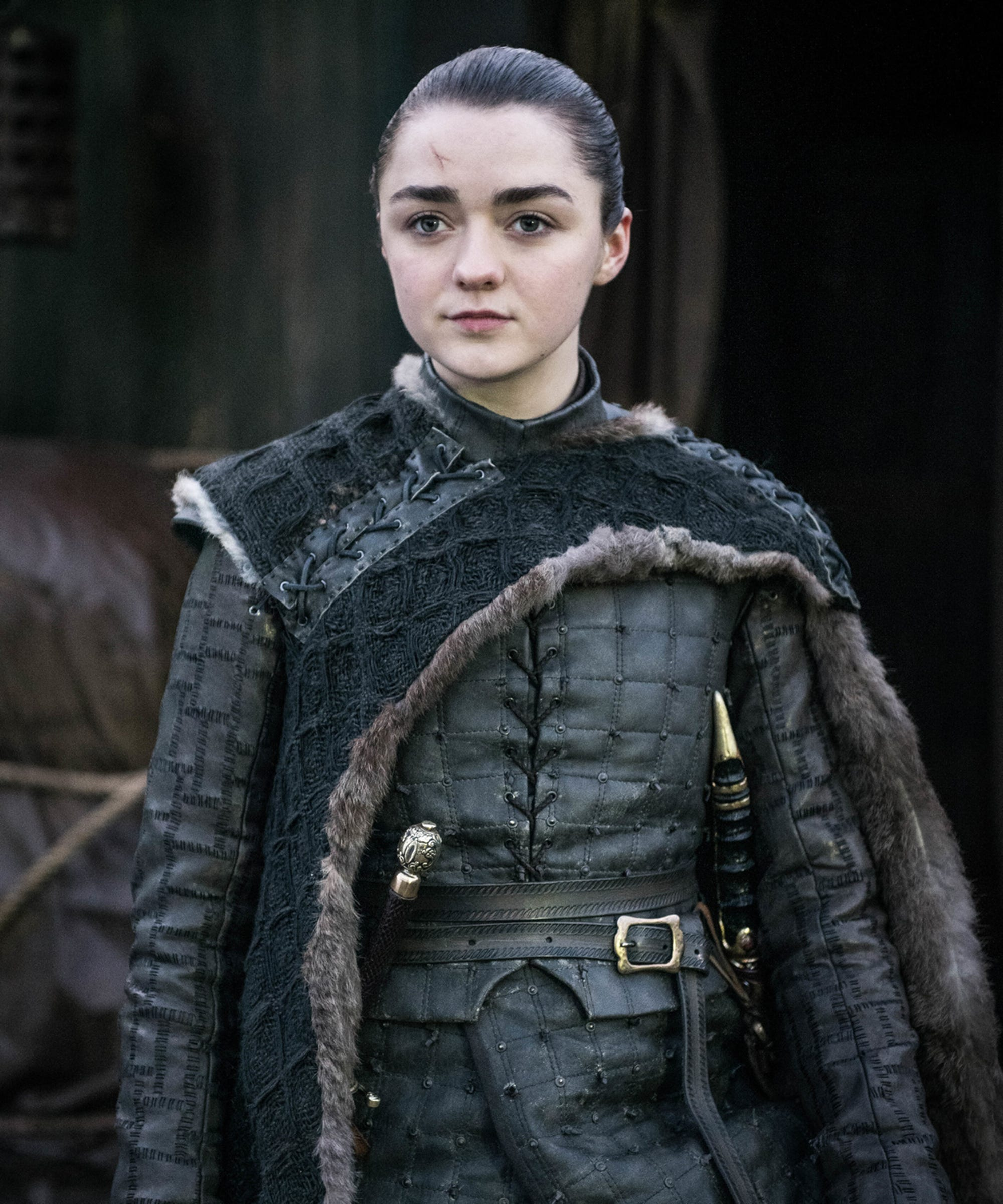 So, The Stark Pack Survived — But What About Their Signature Hairstyles?