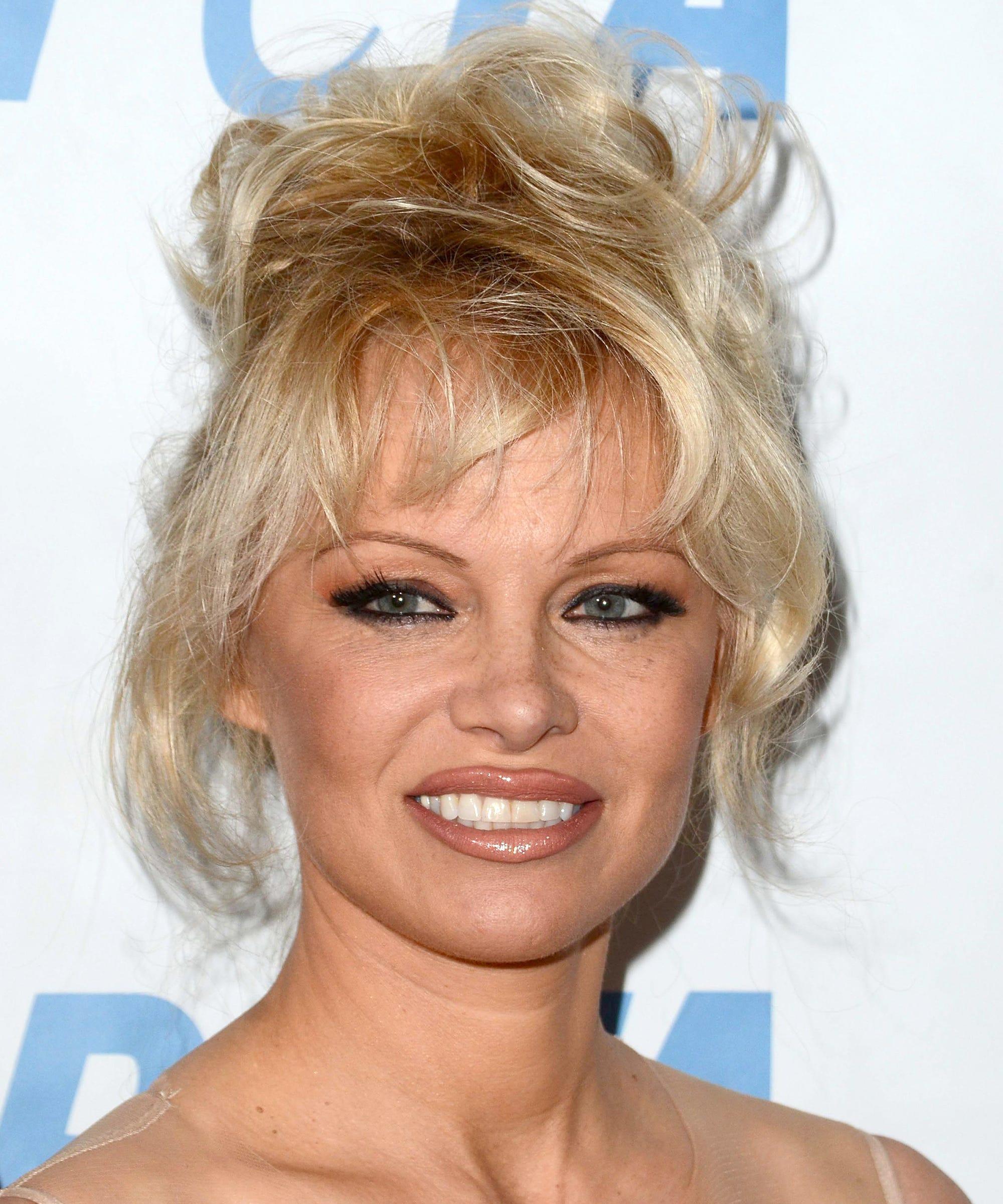 Pamela Anderson Anti Porn Wall Street Journal Column