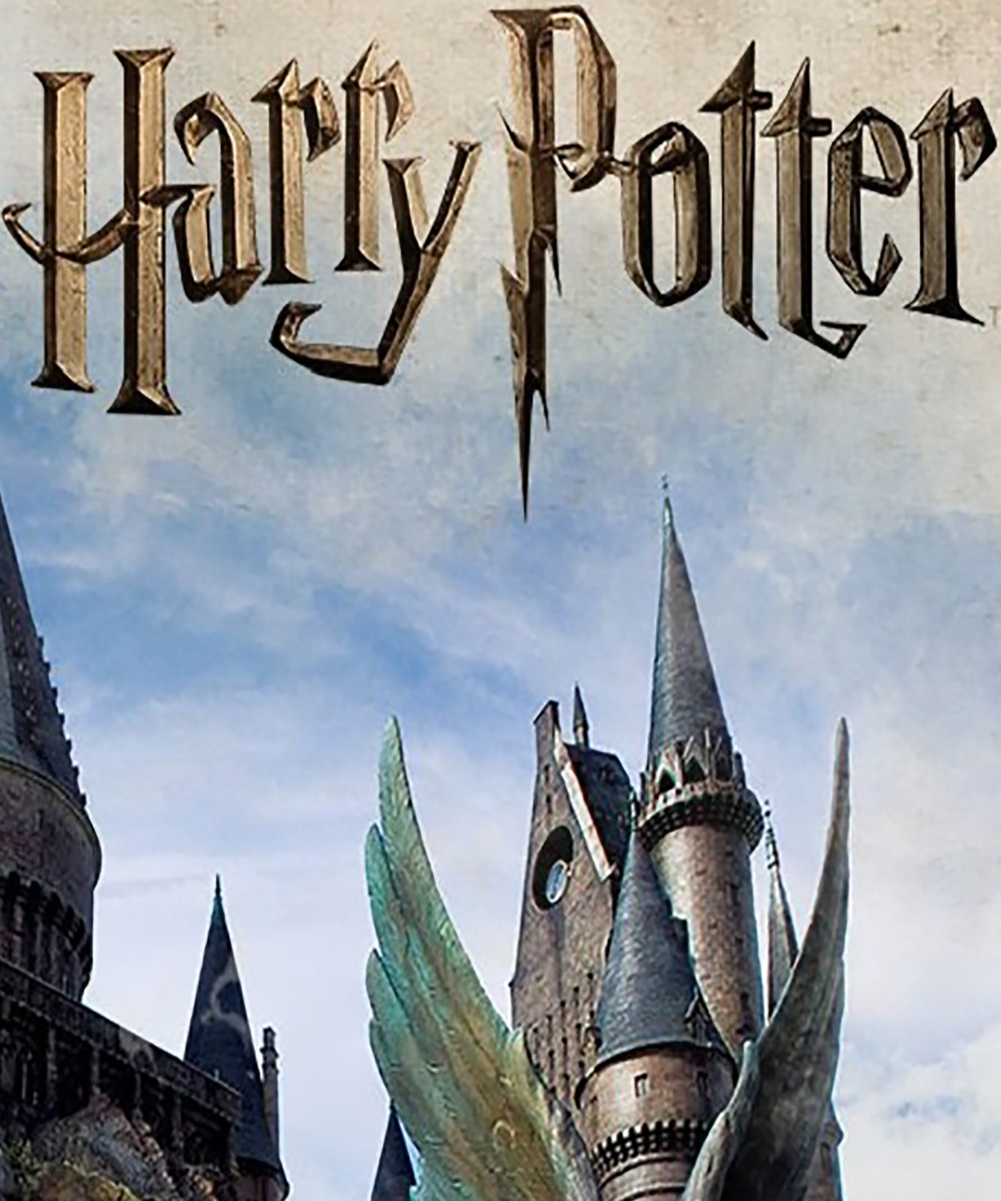 Harry Potter & The Forbidden Journey Ride Reported To Cast A Retching Spell