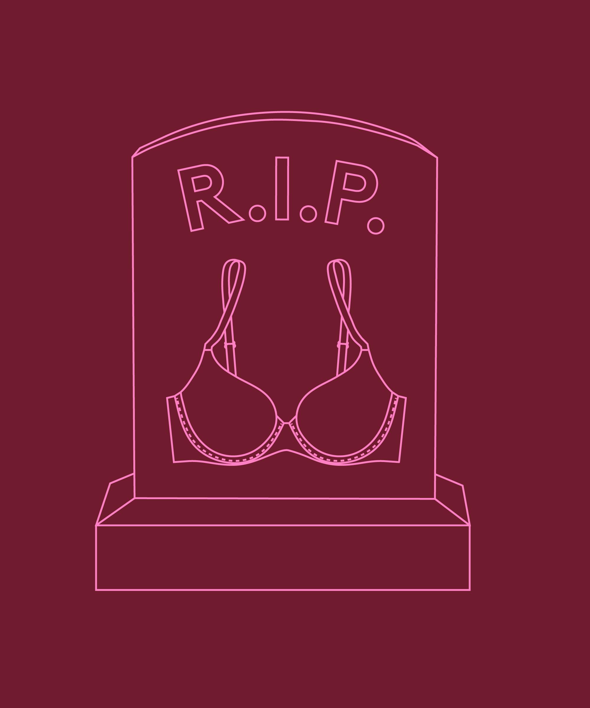 Push Up Bras Replaced, Victoria Secret Sales Decline
