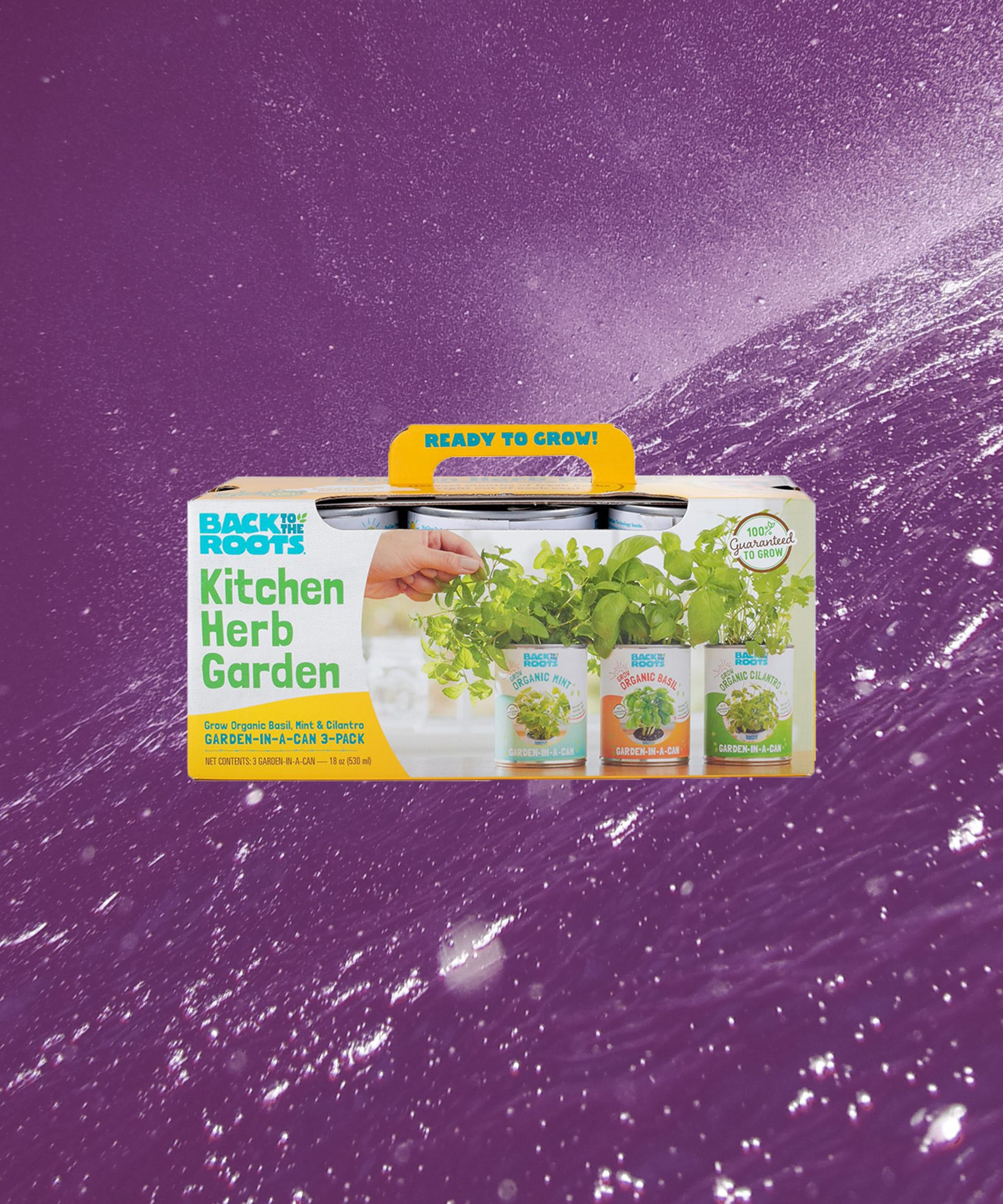 Cook Like A Gourmet Chef With These Highly-Rated Indoor Herb Garden Kits