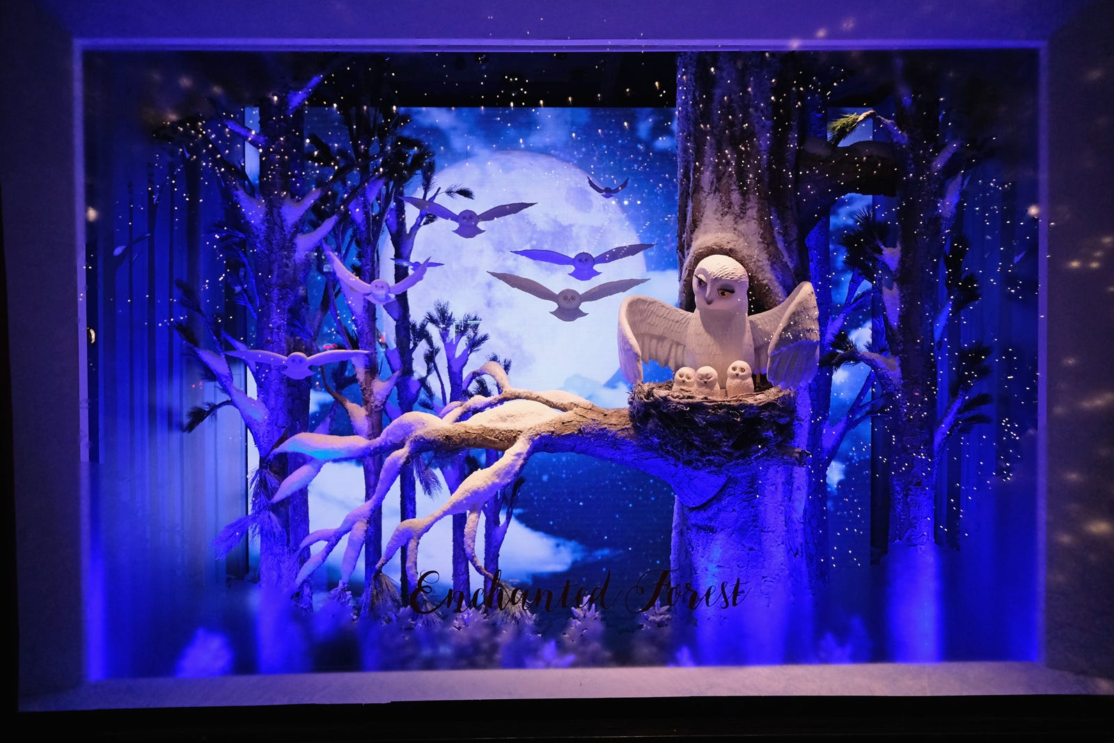 NYC Holiday Windows - Barneys Bergdorf Goodman Photos