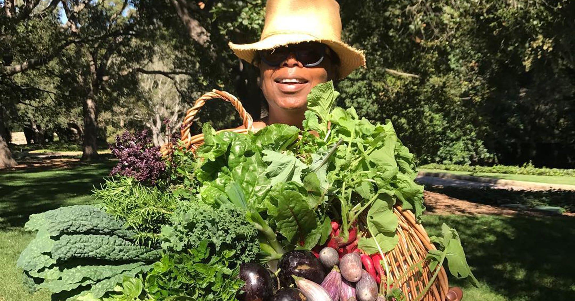 Image result for oprah winfrey orchard