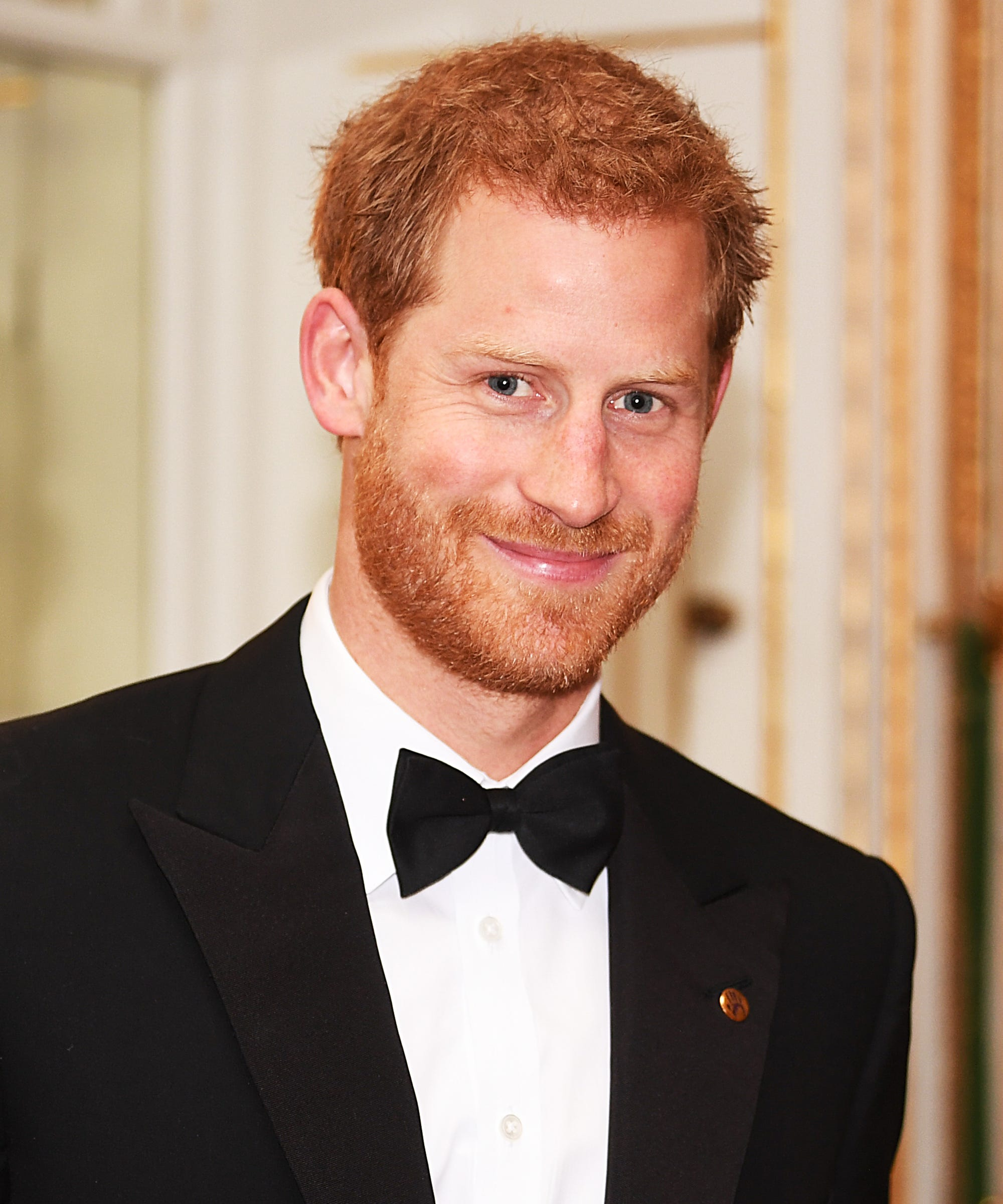 Prince Harry is continuing Princess Diana's work and taking up her campaign