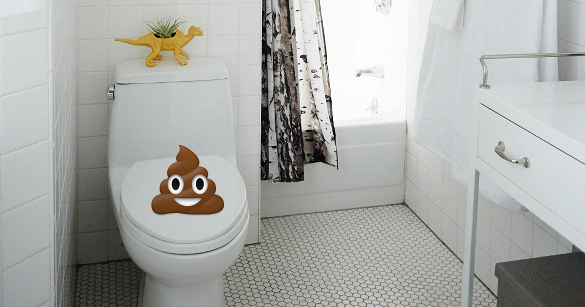 klogefl ster unangenehmer geruch auf der toilette. Black Bedroom Furniture Sets. Home Design Ideas