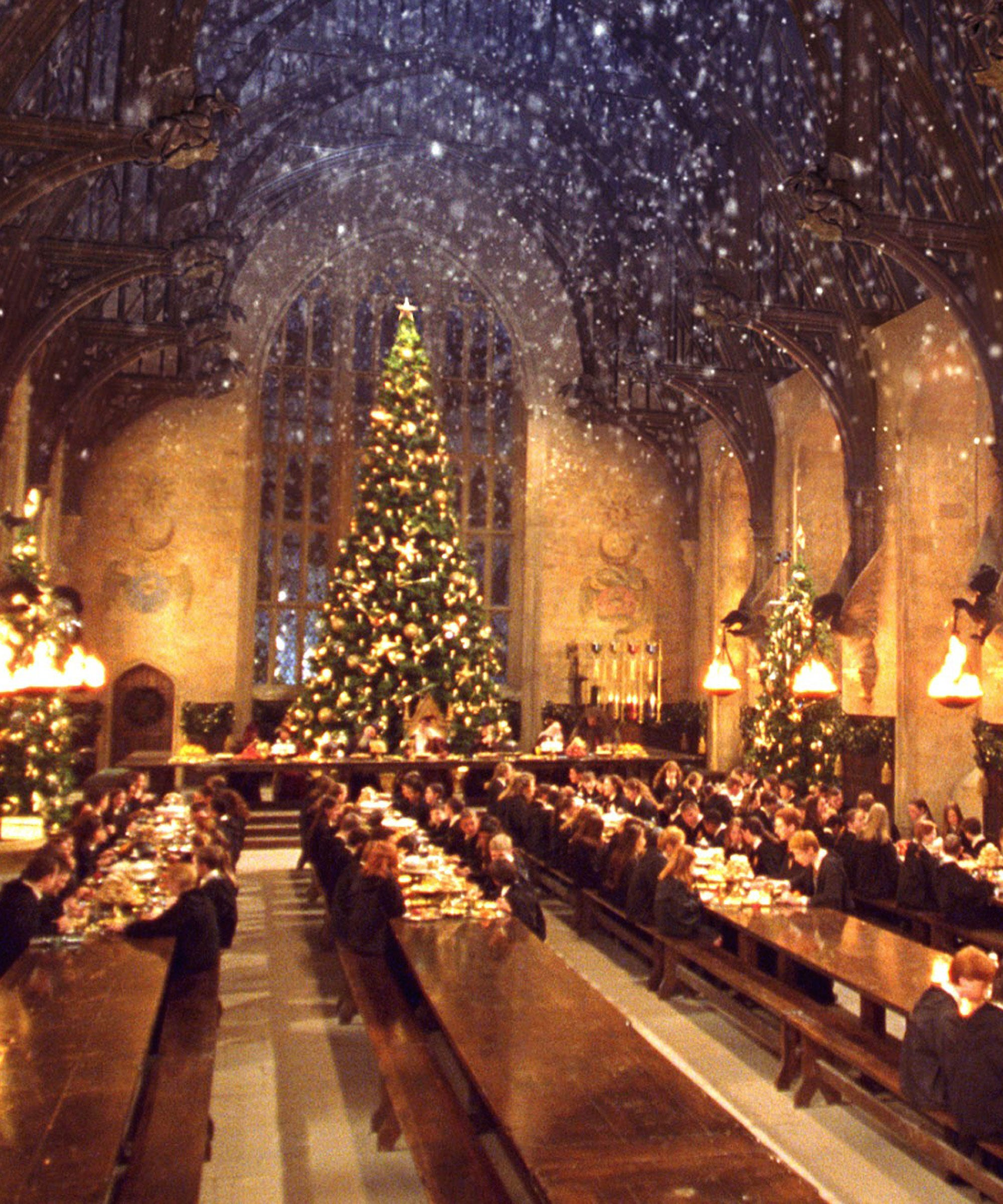 Harry Potter Christmas.Harry Potter Christmas Tree