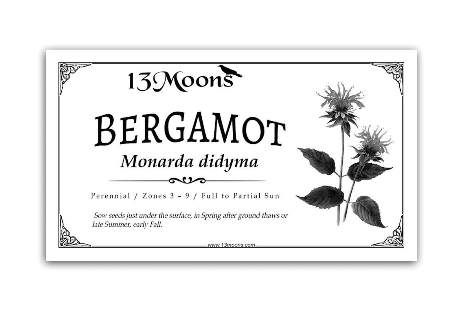 Bergamot Seeds