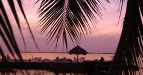 Best Florida Cities, Hotels, Beaches, Nightlife, Dining