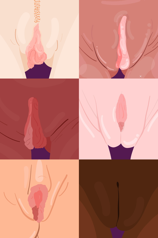 Erotic web cam for females