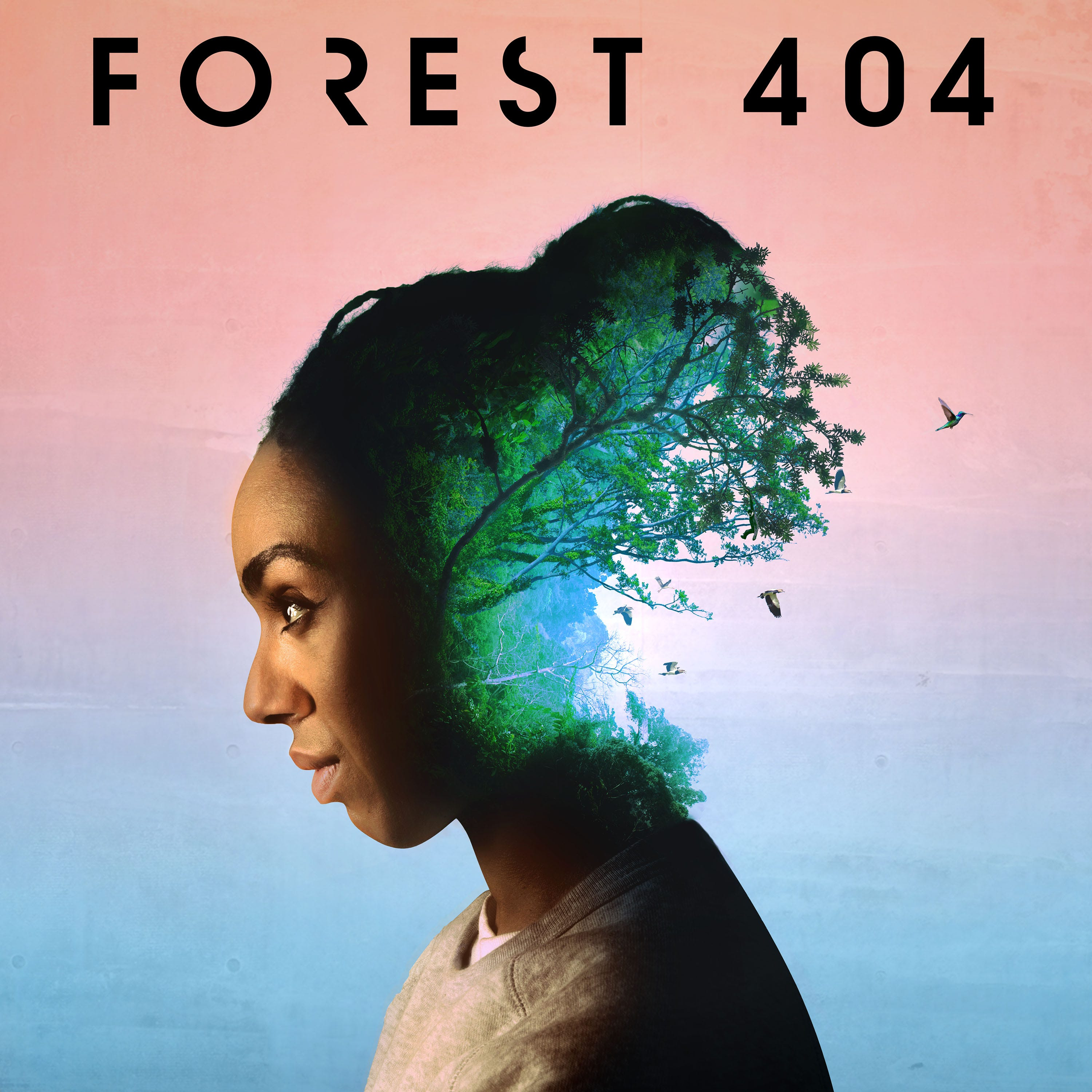 BBC Sounds Podcast Forest 404 Is A Must Listen